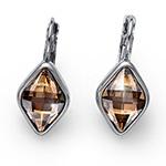 Stříbrné náušnice s krystaly Swarovski Oliver Weber 22648