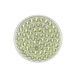 Obrázek è. 2 k produktu: Pøívìsek Hot Diamonds Emozioni Scintilla Peridot Nature Coin
