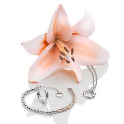 Obrázek è. 6 k produktu: Støíbrný prsten Hot Diamonds Breeze