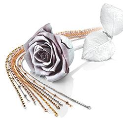Obrázek č. 7 k produktu: Stříbrný řetízek Hot Diamonds Emozioni Bead Rose 45