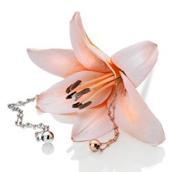 Obrázek è. 6 k produktu: Støíbrný náhrdelník Hot Diamonds Globe Rose Gold