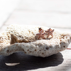 Obrázek č. 2 k produktu: Stříbrné náušnice Hot Diamonds Daisy DE603