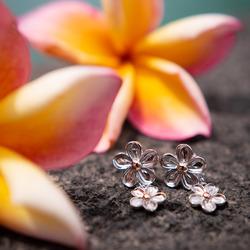 Obrázek č. 11 k produktu: Náušnice Hot Diamonds Forget me not RG DE617