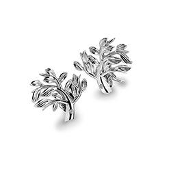 Obrázek č. 1 k produktu: Stříbrné náušnice Hot Diamonds Jasmine DE565