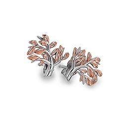 Obrázek č. 1 k produktu: Stříbrné náušnice Hot Diamonds Jasmine RG DE566