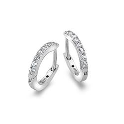 Obrázek č. 1 k produktu: Stříbrné náušnice Hot Diamonds Flora DE581