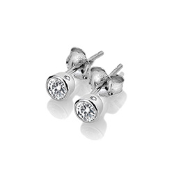 Obrázek è. 2 k produktu: Støíbrné náušnice Hot Diamonds Willow DE584