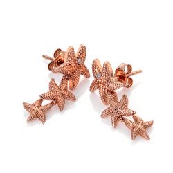 Obrázek è. 2 k produktu: Støíbrné náušnice Hot Diamonds Daisy DE602
