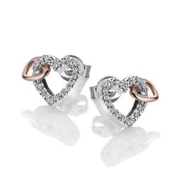 Obrázek è. 2 k produktu: Støíbrné náušnice Hot Diamonds Flora RG DE606