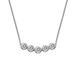 Støíbrný náhrdelník Hot Diamonds Willow DN129