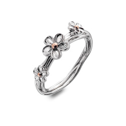 Prsten Hot Diamonds Forget me not RG DR214