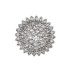 Obrázek è. 4 k produktu: Pøívìsek Hot Diamonds Emozioni Spirzzare Coin EC460-461
