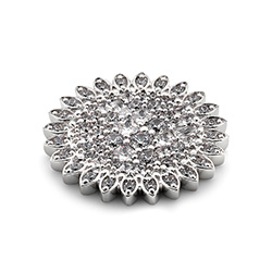 Obrázek è. 2 k produktu: Pøívìsek Hot Diamonds Emozioni Spirzzare Coin EC460-461
