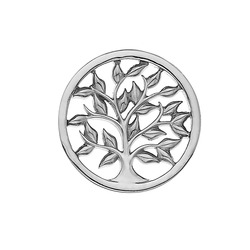 Obrázek č. 1 k produktu: Přívěsek Hot Diamonds Emozioni Balance and Harmony Sparkle Coin EC480-481
