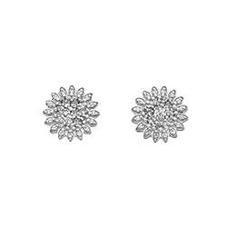 Obrázek è. 2 k produktu: Støíbrné náušnice Hot Diamonds Emozioni Spirzzare EE031