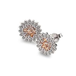 Støíbrné náušnice Hot Diamonds Emozioni Spirzzare EE032