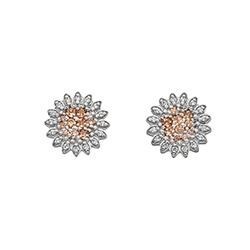 Obrázek è. 2 k produktu: Støíbrné náušnice Hot Diamonds Emozioni Spirzzare EE032