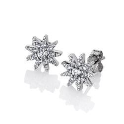 Obrázek č. 1 k produktu:  Náušnice Hot Diamonds Emozioni Stella EE037