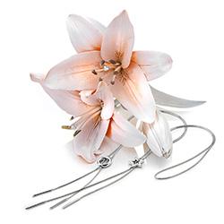 Obrázek è. 6 k produktu: Støíbrný náhrdelník Hot Diamonds Love DN116