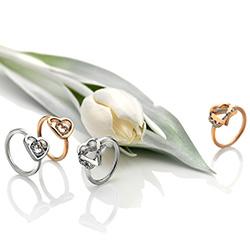 Obrázek è. 6 k produktu: Støíbrný prsten Hot Diamonds Adorable Encased DR201