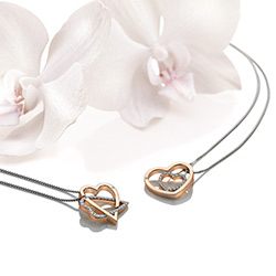 Obrázek è. 8 k produktu: Støíbrný pøívìsek Hot Diamonds Adorable Encased Rose Gold DP692