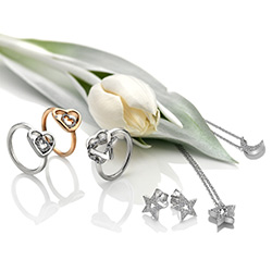 Obrázek č. 7 k produktu: Stříbrný přívěsek Hot Diamonds Crescent Micro Bliss DP698