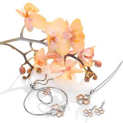 Obrázek č. 1 k produktu: Stříbrné náušnice Hot Diamonds Lucky in Love RG DE635