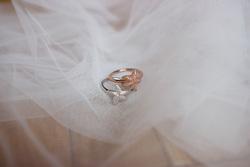Obrázek è. 8 k produktu: Støíbrný prsten Hot Diamonds Daisy RG DR212