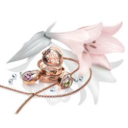 Obrázek č. 11 k produktu: Přívěsek na elementy Hot Diamonds Anais srdce RG AL013