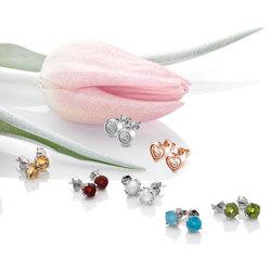 Obrázek č. 5 k produktu: Stříbrné náušnice Hot Diamonds Anais Karneol AE007