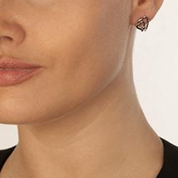 Obrázek è. 6 k produktu: Støíbrné náušnice Hot Diamonds Love DE532