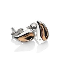 Obrázek è. 2 k produktu: Náušnice Hot Diamonds Together RG DE547