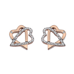 Stříbrné náušnice Hot Diamonds Adorable Rose Gold DE551