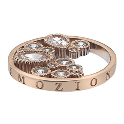Obrázek č. 1 k produktu: Přívěsek Hot Diamonds Emozioni Spirito Libero Freedom RG Coin 446-447