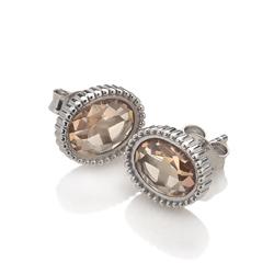 Obrázek è. 2 k produktu: Støíbrné náušnice Hot Diamonds Emozioni Loyalty EE029