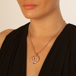 Obrázek è. 4 k produktu: Støíbrný pøívìsek Hot Diamonds Emozioni Reflessi Coin Keeper RG EK045-46