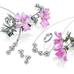 Obrázek č. 1 k produktu: Náušnice Hot Diamonds Forget me not RG DE617