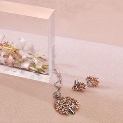 Obrázek è. 4 k produktu: Støíbrné náušnice Hot Diamonds Jasmine RG DE566