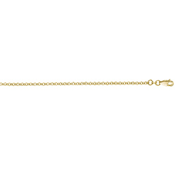 Obrázek č. 3 k produktu: Stříbrný řetízek Hot Diamonds Emozioni Belcher Yellow 76