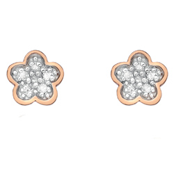 Støíbrné náušnice Hot Diamonds Stargazer CFlower Rose Gold