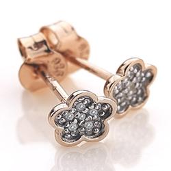 Obrázek č. 2 k produktu: Stříbrné náušnice Hot Diamonds Stargazer CFlower Rose Gold