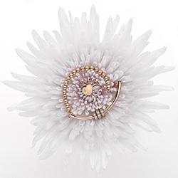 Obrázek è. 8 k produktu: Støíbrný náramek Hot Diamonds Parade Rose Gold