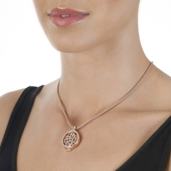 Obrázek è. 12 k produktu: Støíbrný pøívìsek Hot Diamonds Emozioni Coin Keeper Rose