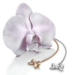 Obrázek è. 4 k produktu: Støíbrný pøívìsek Hot Diamonds Ribbon Plated DP631