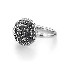 Obrázek è. 10 k produktu: Støíbrný prsten Hot Diamonds Emozioni Bouquet Black