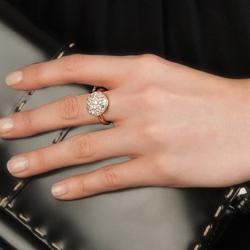 Obrázek è. 10 k produktu: Støíbrný prsten Hot Diamonds Emozioni Bouquet Rose Gold