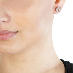 Obrázek è. 4 k produktu: Støíbrné náušnice Hot Diamonds Emozioni Scintilla Champagne