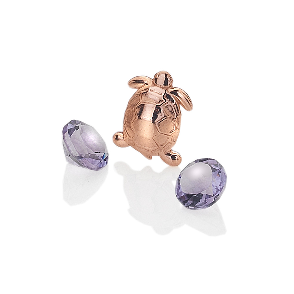 Přívěsek Hot Diamonds Želvička Anais element EX105