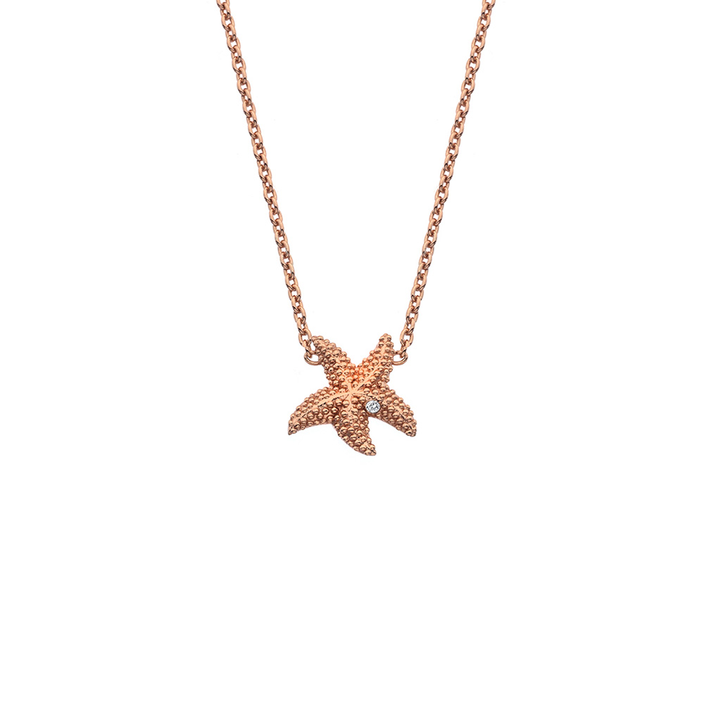Støíbrný náhrdelník Hot Diamonds Daisy RG DN135
